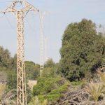 Guardamar anuncia la retirada y desmontaje de una línea eléctrica de que atraviesa en más de un kilómetro las dunas y pinares