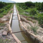 La Generalitat inicia la elaboración del PAT de la Vega Baja cuyo gran reto es la protección y dinamización de la huerta