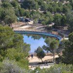 El parque de El Recorral  de Rojales está siendo repoblado con más de 15.000 ejemplares  de arbustos y árboles que serán regadas con aguas depuradas