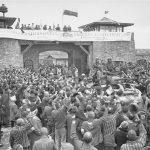 El Ministerio de Justicia permite por primera vez revisar los libros históricos sobre las personas fallecidas en el campo de concentración nazi Mauthausen-Gusen. Cerca de 40 son de la Vega Baja
