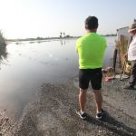 La corporación municipal  de Rojales aprueba por unanimidad solicitar la declaración de zona catastrófica en todo el término